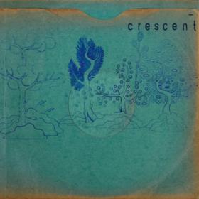 Resin Pockets Crescent