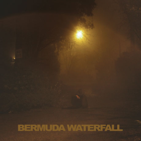 Bermuda Waterfall Sean Nicholas Savage
