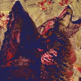 Twin Wolf Twin Wolf