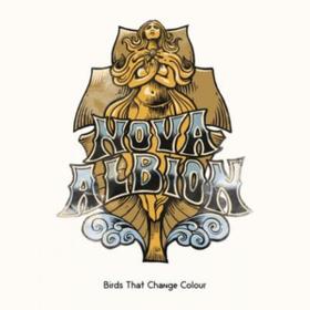 Nova Albion Birds That Change Colour