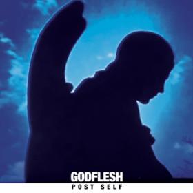 Post Self Godflesh