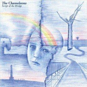 Script Of The Bridge Chameleons