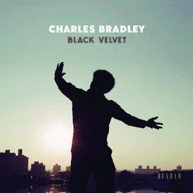 Black Velvet Charles Bradley