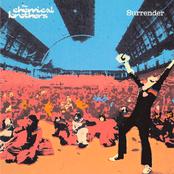 Surrender (Limited Edition)
