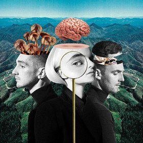 What Is Love? Clean Bandit