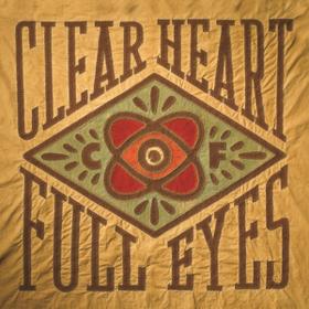 Clear Heart Full Eyes Craig Finn