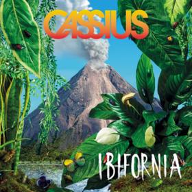 Ibifornia Cassius