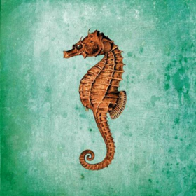 Seahorse Ginger