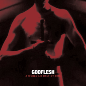 A World Lit Only By Fire Godflesh