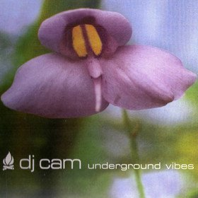 Underground Vibes Dj Cam