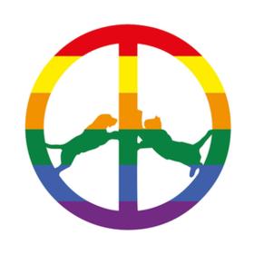 Rainbow Edition Hype Williams