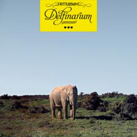 Delfinarium Frittenbude