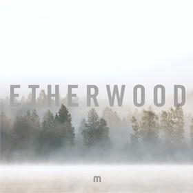 In Stillness Etherwood