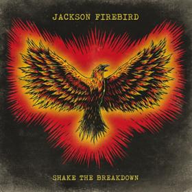 Shake The Breakdown Jackson Firebird
