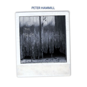 From The Trees Peter Hammill