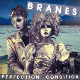 Perfection Condition Branes