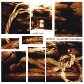 A Perfect Pain Merzbow/Genesis P-orridge