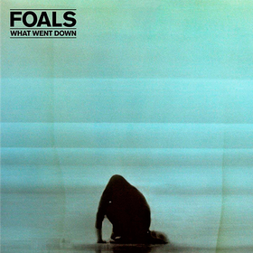 What Went Down Foals