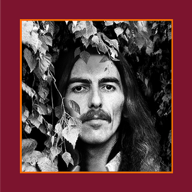 The Vinyl Collection (Limited Edition) George Harrison