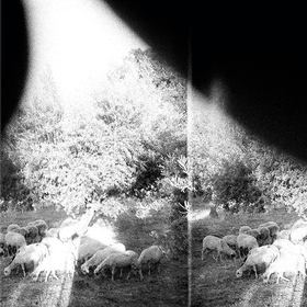 Asunder, Sweet And Other Distress Godspeed You Black Emperor