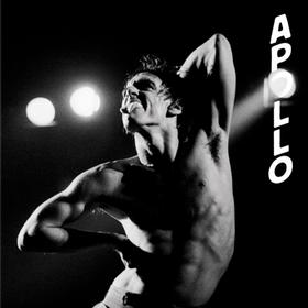 Apollo Iggy Pop