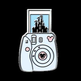 Snapshot Camera PICO Pins