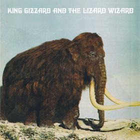 Polygondwanaland King Gizzard And The Lizard Wizard