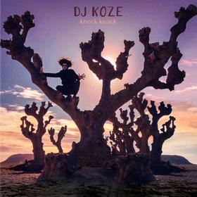 Knock Knock (Limited Edition) DJ Koze
