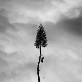 A Black Mile To The Surface (Deluxe) Manchester Orchestra
