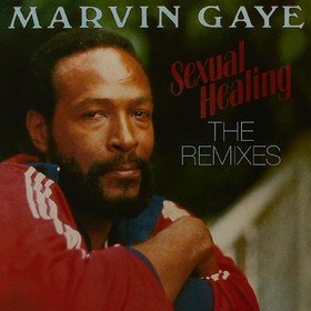 Sexual Healing: The Remixes Marvin Gaye
