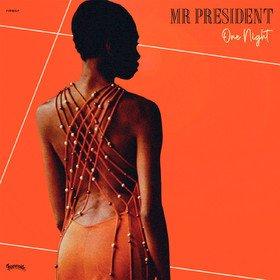 One Night Mr President