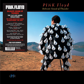 Delicate Sound Of Thunder Pink Floyd