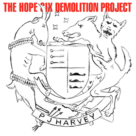 The Hope Six Demolition Project PJ Harvey