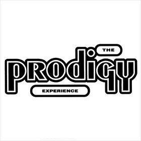Experience Prodigy