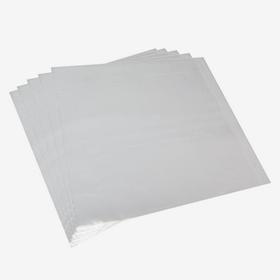 """Внешние конверты для пластинок 12"""" x 20 (80 micron) Audio Anatomy"""