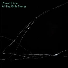 All The Right Noises Roman Flugel