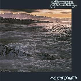 Moonflower Santana