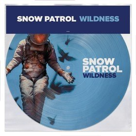 Wildness (Picture Disс) Snow Patrol
