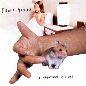 A Thousand Leaves  Sonic Youth