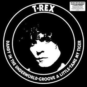 Dandy In The Underworld T. Rex