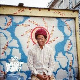What For? Toro Y Moi