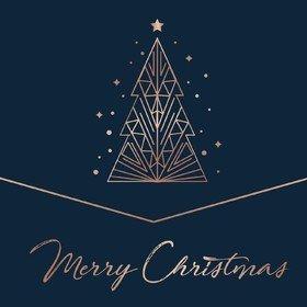 Merry Christmas V/A