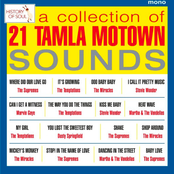 A Collection Of 21 Tamla Motown Sounds - Tamla Motown Live in Europe 1965