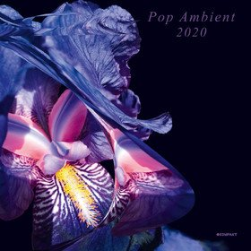 Pop Ambient 2020 Various Artists