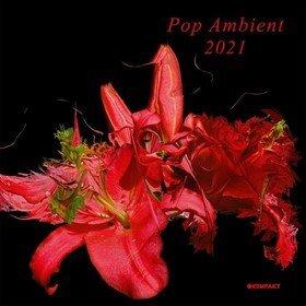 Pop Ambient 2021 Various Artists