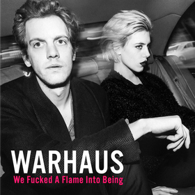 We Fucked A Flame Into Being  Warhaus