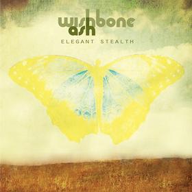 Elegant Stealth Wishbone Ash