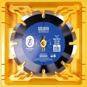 7-Goliath Woodkid